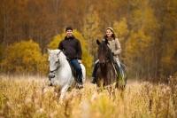 Прогулка на лошадях с. Нижняя Хортица